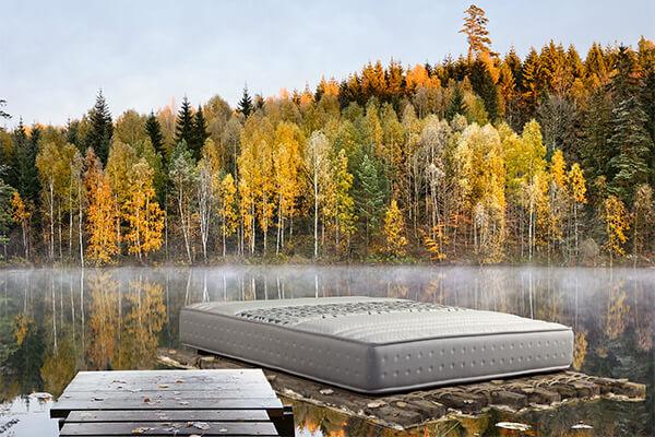Hälsa 瑞典進口床墊品牌